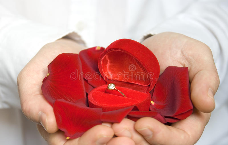 Pétalos y anillo de compromiso/tarjeta del día de San Valentín de Rose foto de archivo