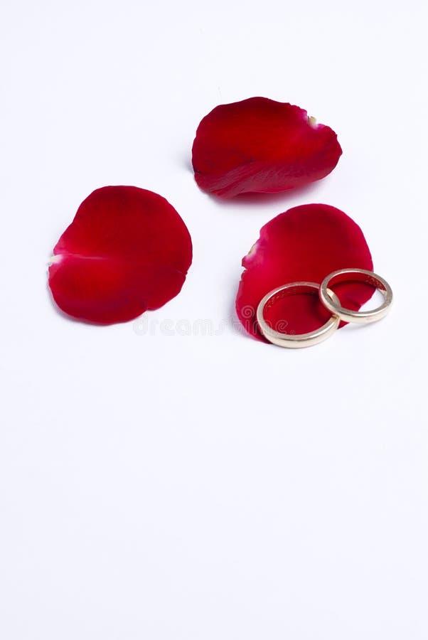 Pétalos y anillos rojos fotos de archivo libres de regalías