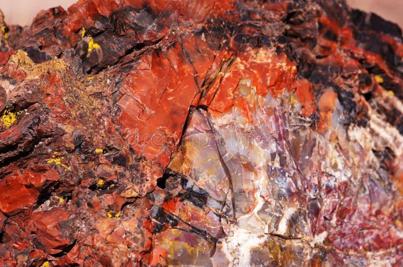 Pétrifié-Forêt-National-parc, Arizona, Etats-Unis photo stock