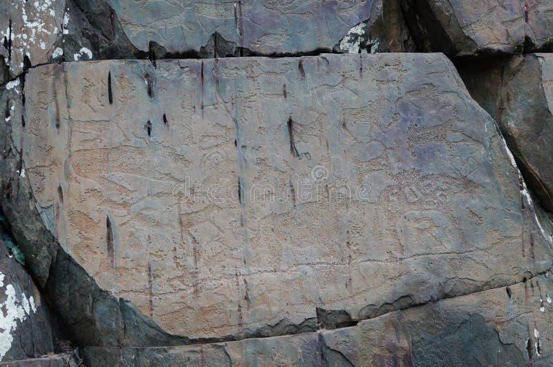 Pétroglyphes d'animal fantastique chez Kalbak-Tash, Russie photographie stock