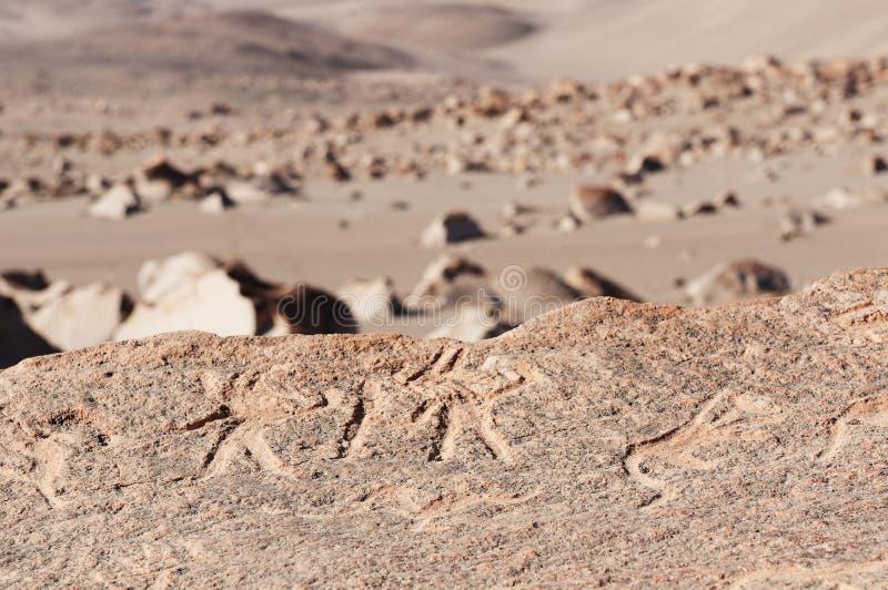 Pétroglyphes du Pérou, Toro Muerto images stock