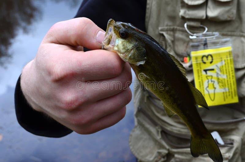 A pêché un poisson photos stock