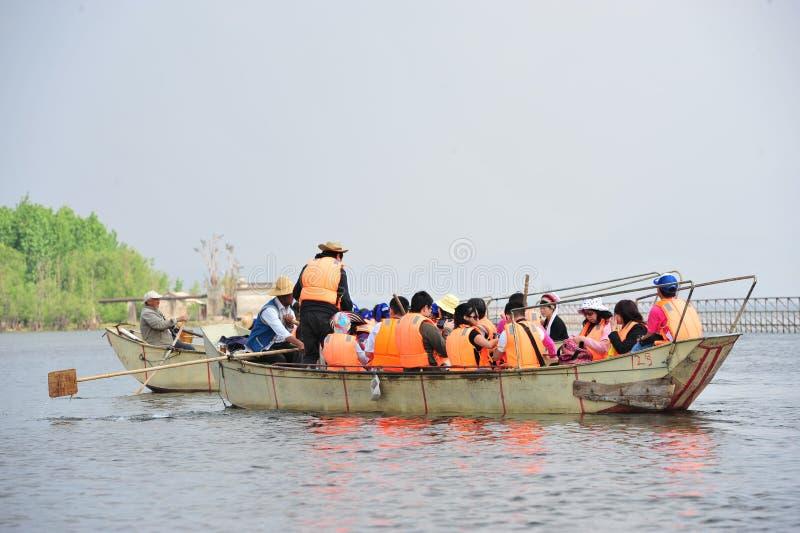 Pêche chinoise d'homme avec des oiseaux de cormorans photos stock