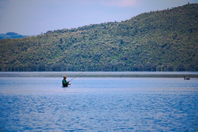 Pêche d'homme avec un cygne photo libre de droits