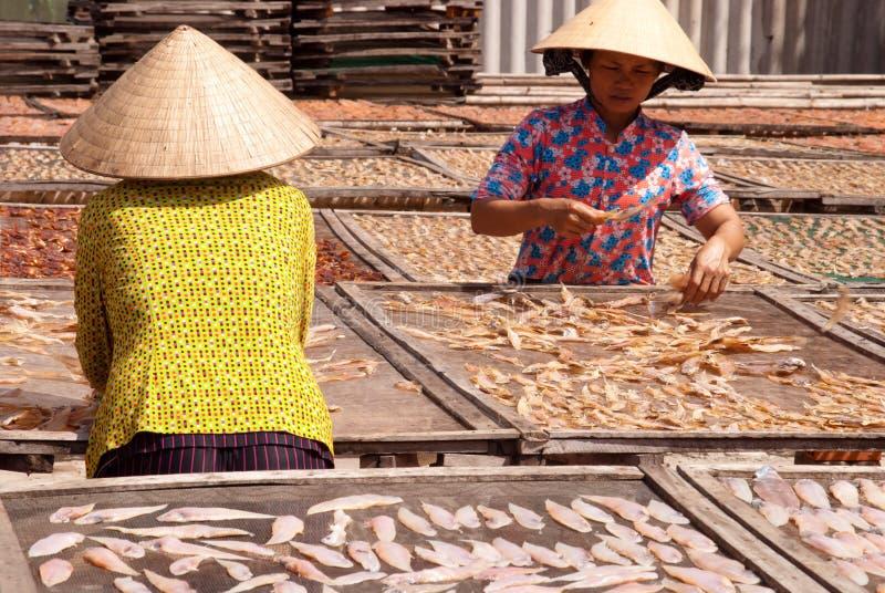Pêche dans la tri province de Ba photographie stock libre de droits