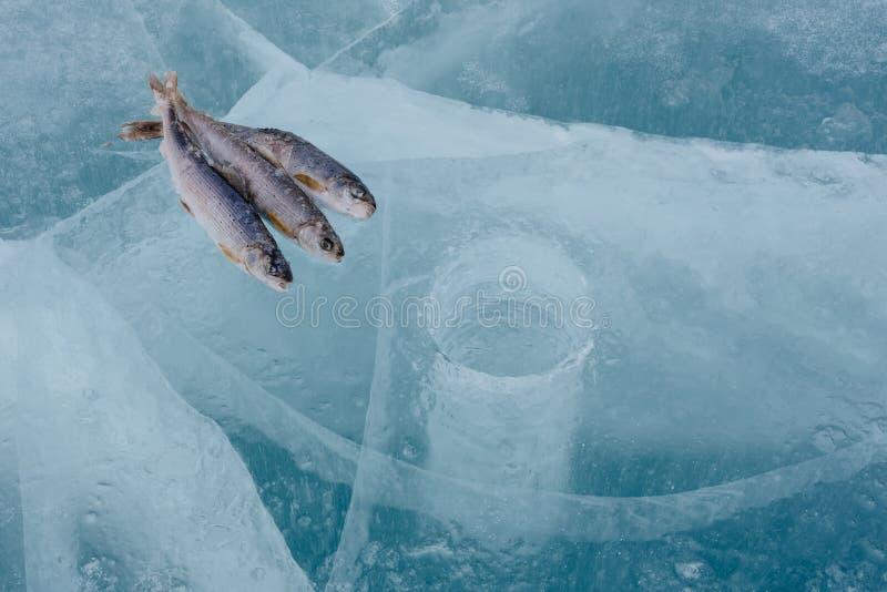 Pêche de l'hiver sur le lac photographie stock libre de droits