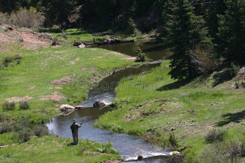 Pêche de mouche du Colorado image libre de droits