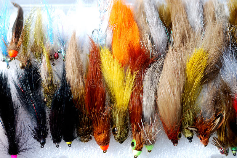Pêche des mouches photo stock