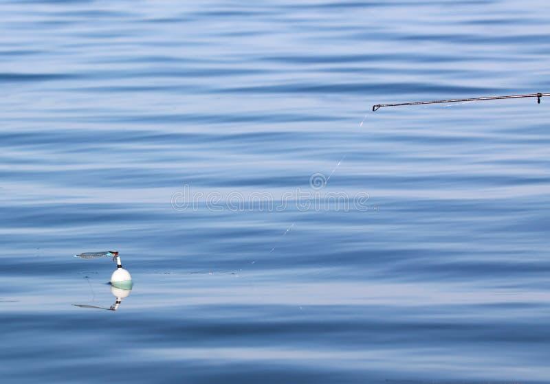 Pêche du flotteur avec la libellule photos stock
