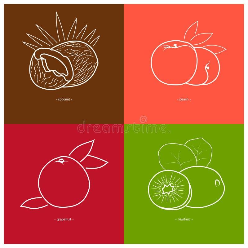 Download Pêche, Kiwi, Noix De Coco, Pamplemousse Illustration de Vecteur - Illustration du mangez, agriculture: 56481324