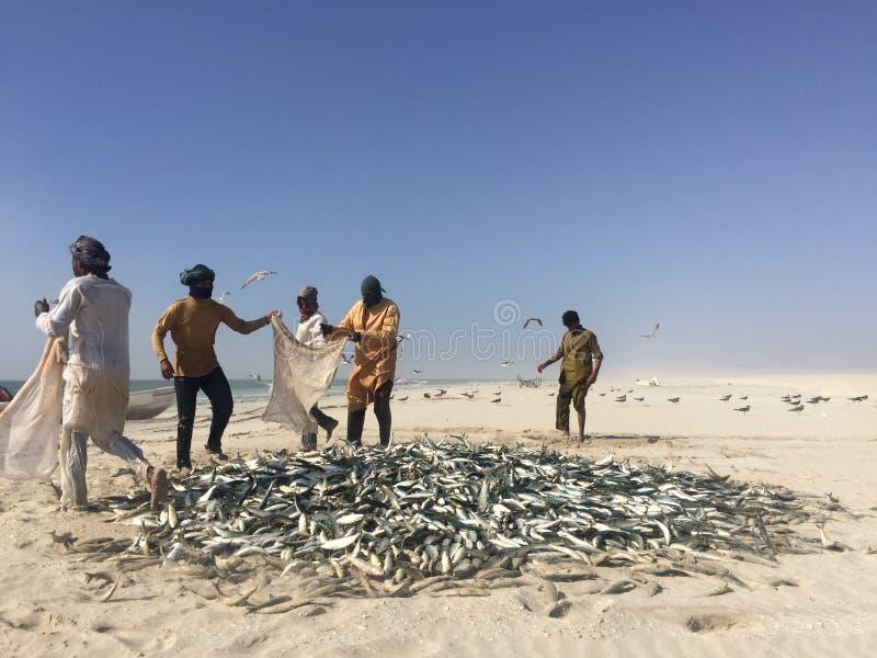 Pêche traditionnelle en Oman photo stock