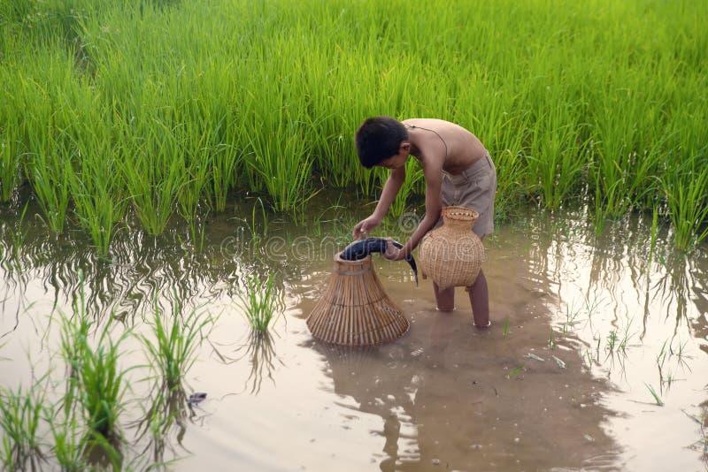 Pêcheur asiatique d'enfants photo libre de droits