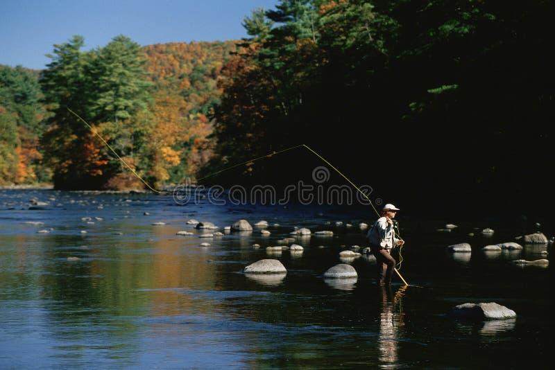 Pêcheur dans l'eau photos libres de droits