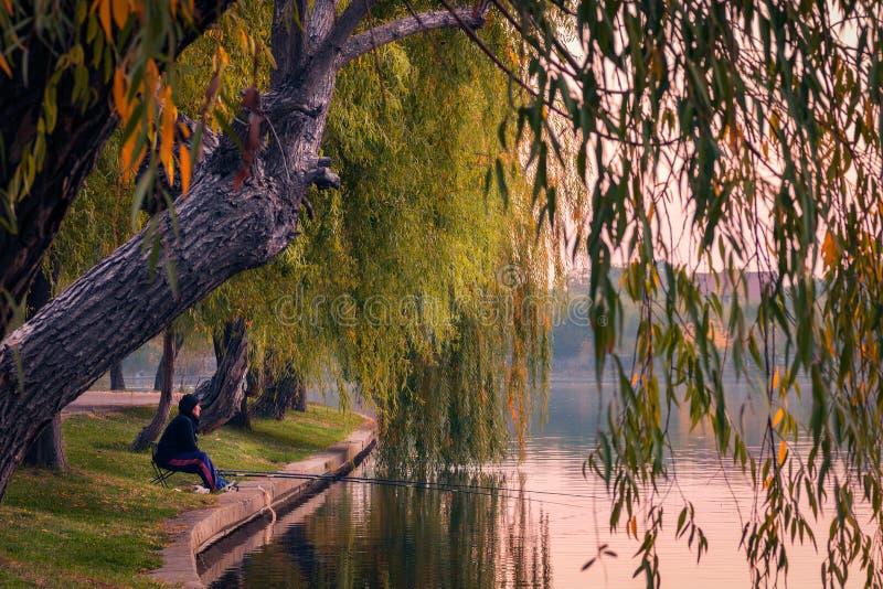 Pêcheur dans la lumière de matin au lever de soleil sur un lac avec la tige deux image stock