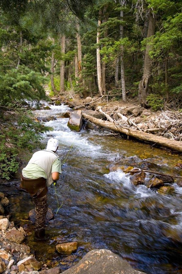 Pêcheur dans le fleuve photos libres de droits