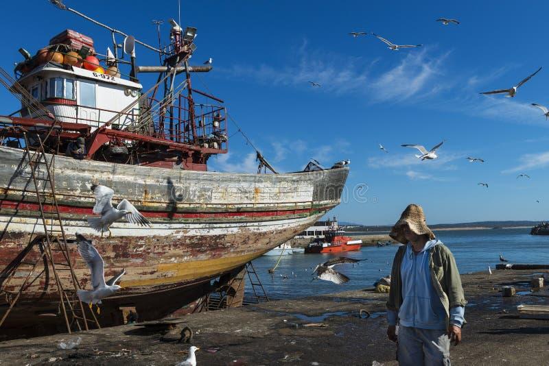 Pêcheur dans le port de pêche d'Essaoira dans la côte atlantique du Maroc, Afrique du nord photos libres de droits