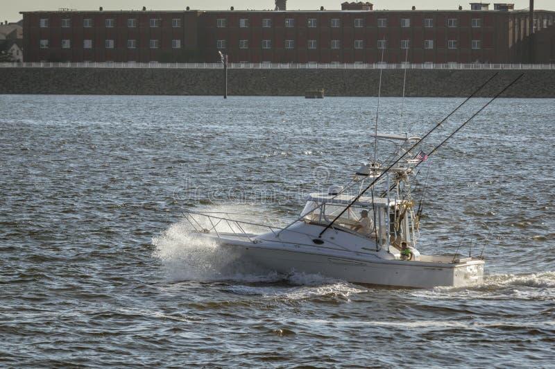 Pêcheur de sport frappant la côtelette photo libre de droits