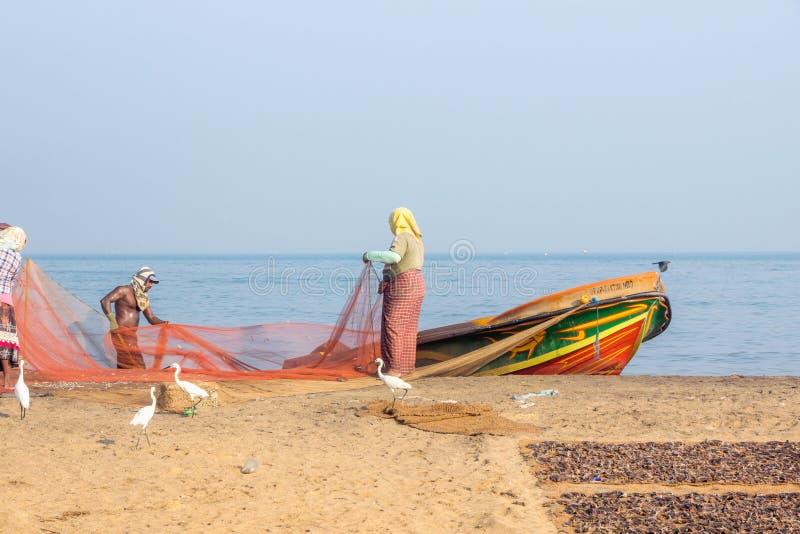 Pêcheur travaillant à la poissonnerie de plage dans Negombo photo stock