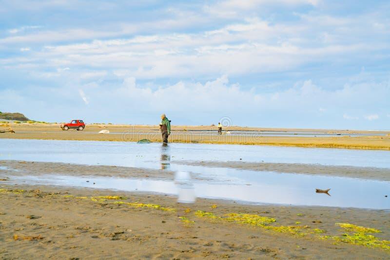 Pêcheurs éloignés et véhicules whitebaiting photos libres de droits