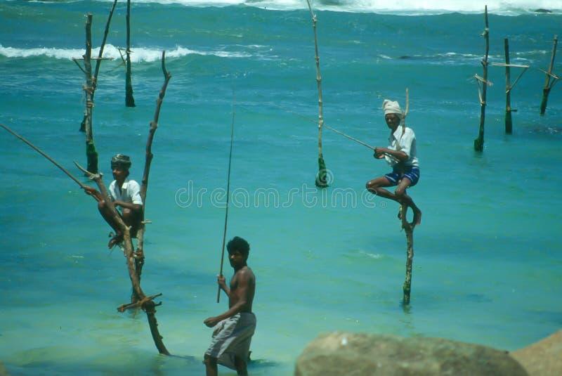 Pêcheurs d'échasse photographie stock libre de droits