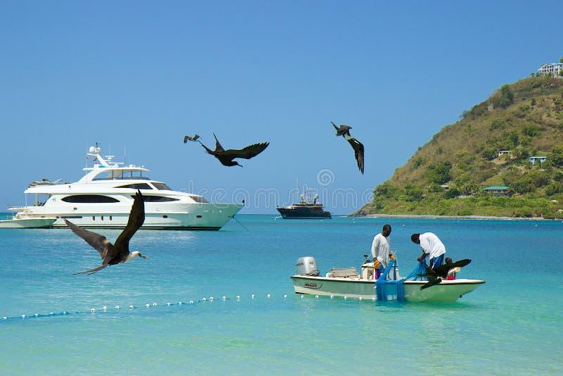 Pêcheurs dans Tortola, des Caraïbes photo stock