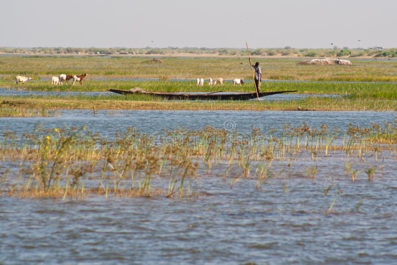 Pêcheurs dans une pirogue dans le fleuve de Niger. image stock