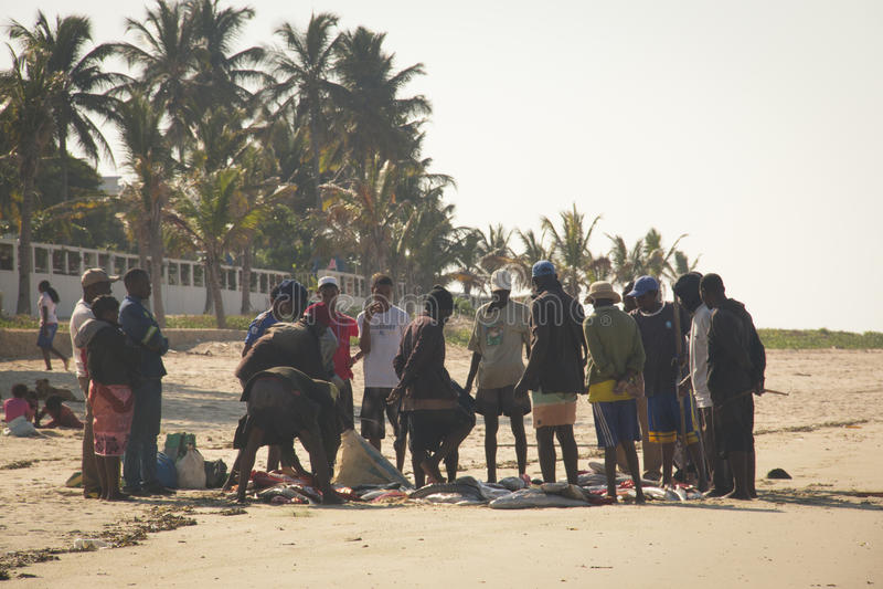 Pêcheurs recueillis autour des poissons dans Vilanculos image libre de droits