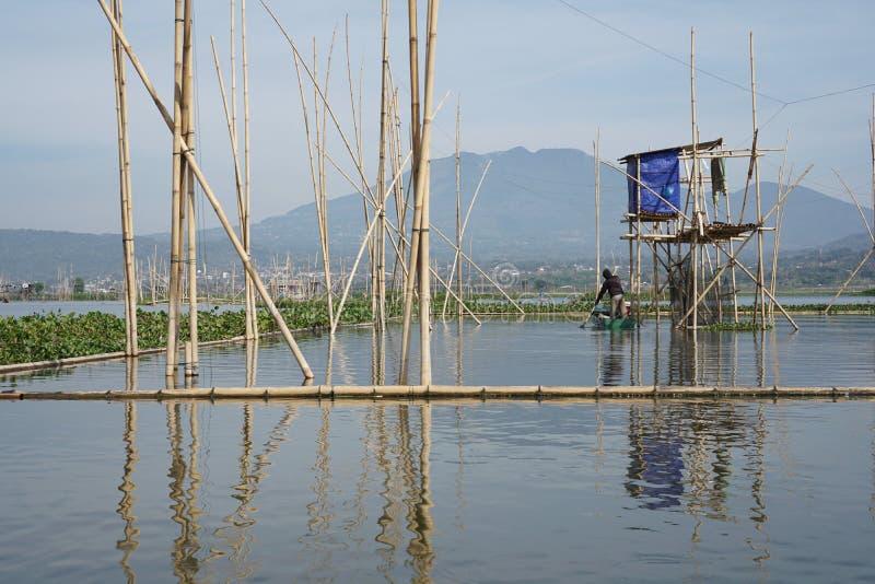 Pêcheurs sur Rawa parquant le lac, Java-Centrale, Indonésie photos stock