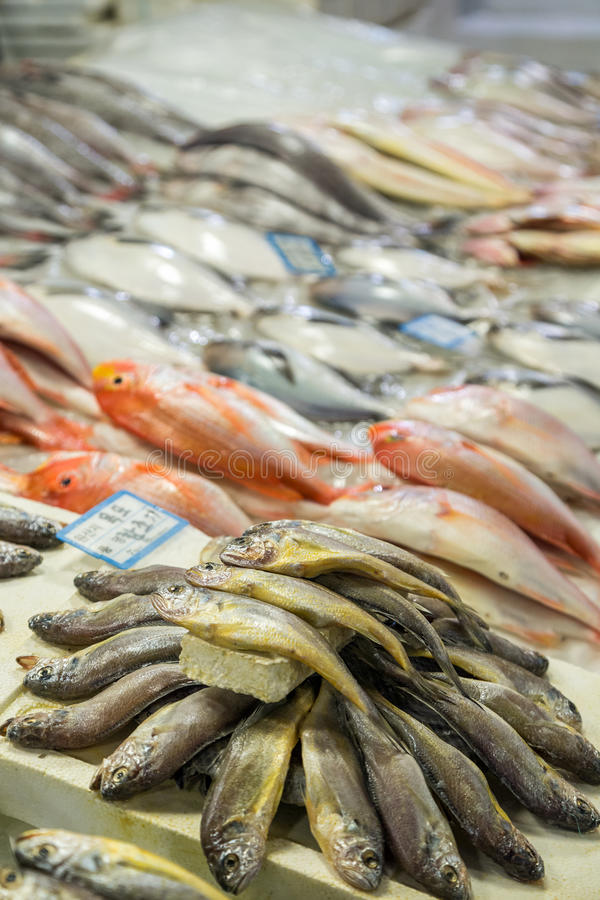 Pêchez en vente à la poissonnerie de Noryangjin à Séoul photos stock