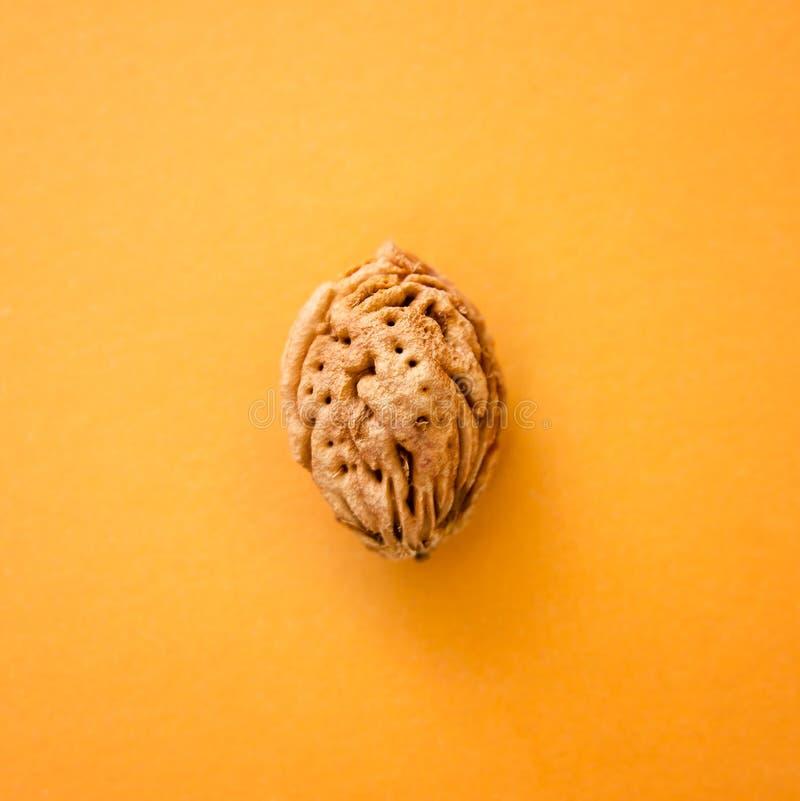 Pêssego do osso em um fundo amarelo imagem de stock