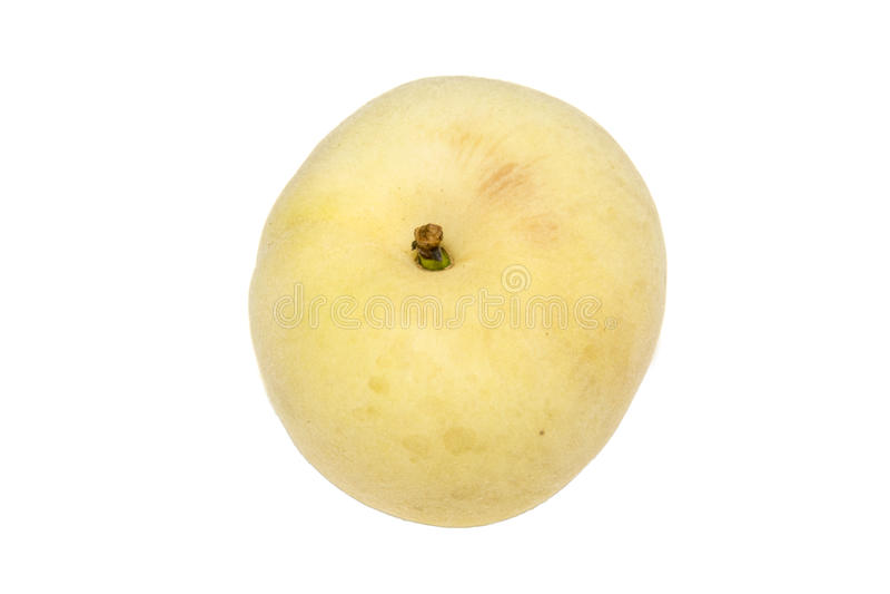Pêssegos brancos japoneses isolados na foto branca do fundo beaut fotografia de stock royalty free