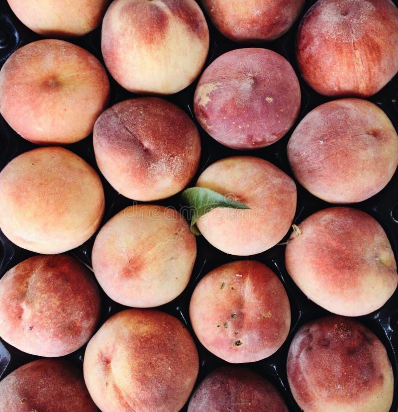 Pêssegos suculentos maduros orgânicos, close up foto de stock royalty free