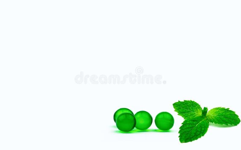 Píldoras de la cápsula y hojas de menta suaves redondas verdes en el fondo blanco con el espacio de la copia Medicina de Ayurvedi fotografía de archivo libre de regalías