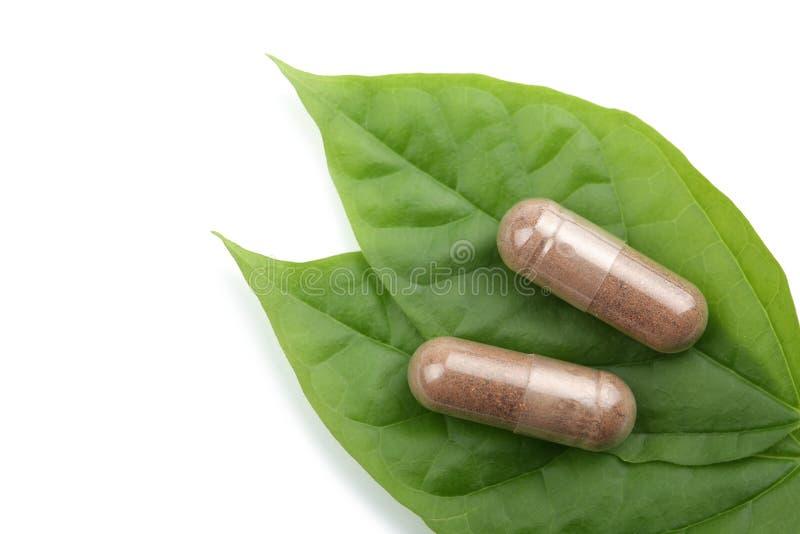 Píldoras de la prescripción sobre la hoja verde aislada imagen de archivo libre de regalías