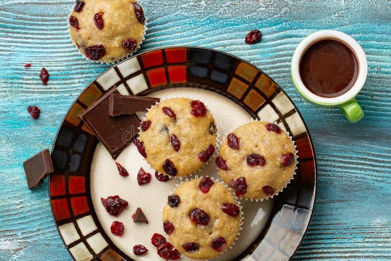 Półmisek domowej roboty weganinu dyniowi muffins z czekoladą i wysuszonymi wiśniami zdjęcie royalty free