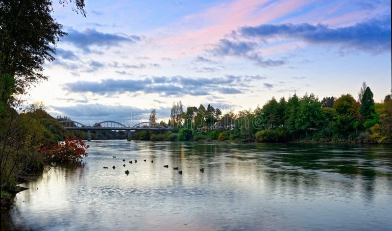 Półmrok wzdłuż Waikato rzeki w Hamilton, Nowa Zelandia obrazy royalty free