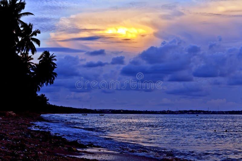 półmroku plażowy światło fotografia royalty free