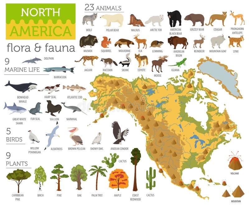 Północna Ameryka faun i flor mapa, płascy elementy Zwierzęta, ptaki ilustracji