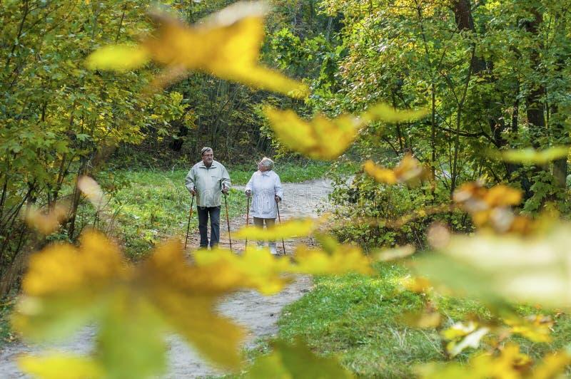 Północna chodząca starsza para w lesie zdjęcia royalty free