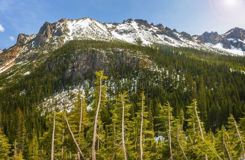 Północne Kaskadowe góry zdjęcie royalty free