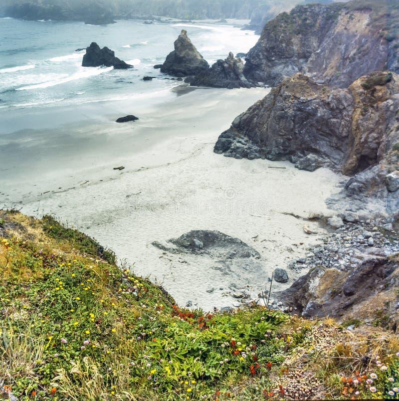 Północnego Kalifornia wybrzeże zdjęcie stock