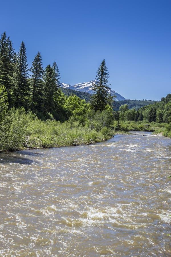 Północnego rozwidlenia Gunnison rzeczny sceniczny widok przy Paonia stanu parkiem, Kolorado zdjęcia royalty free