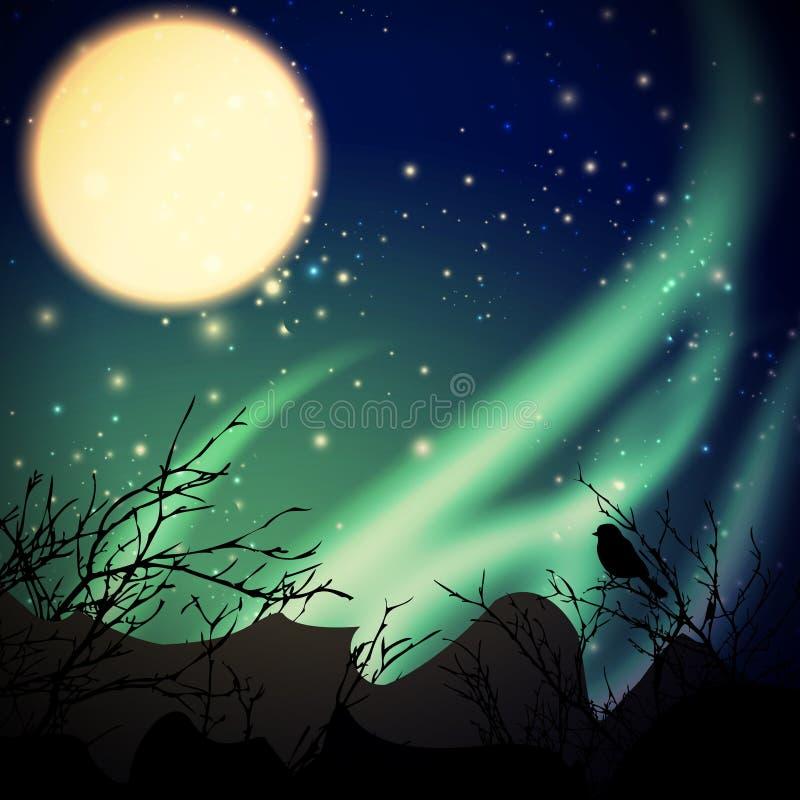 Północni światła ilustracji