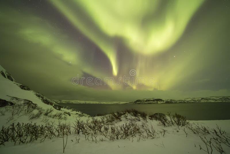 Północni światła na Kola półwysepie Teriberka, Murmansk Regio zdjęcie stock