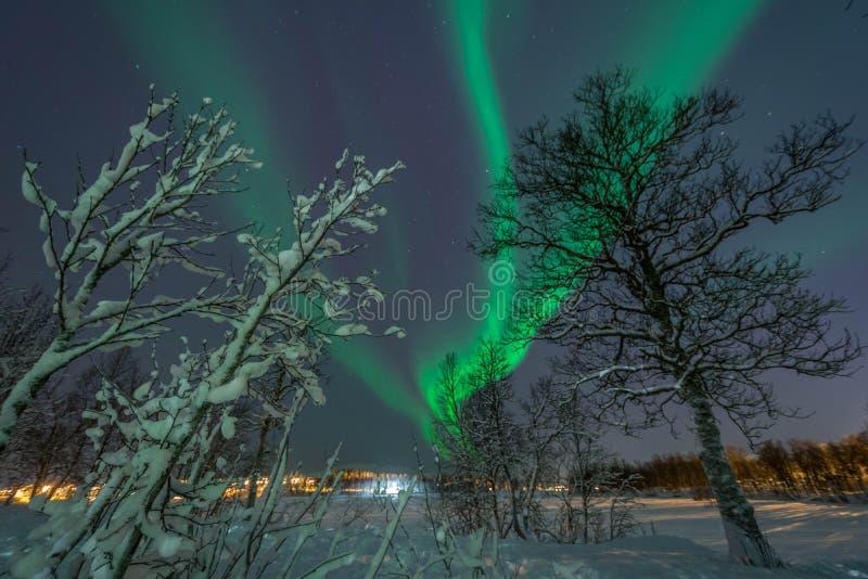 Północni światła, zorz borealis/ fotografia stock