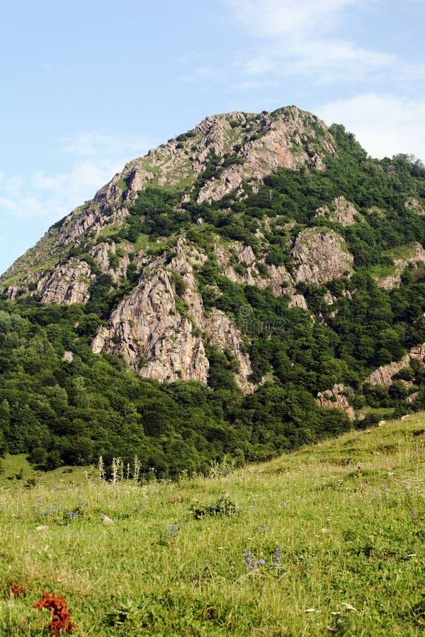 północni Caucasus pogórza zdjęcia stock