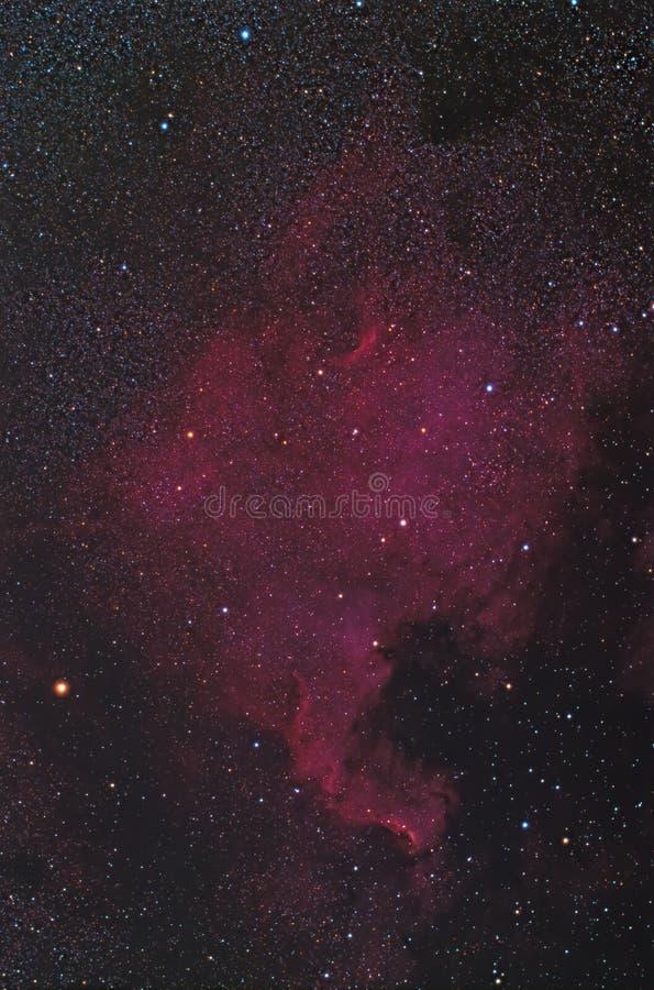 Północnoamerykańska mgławica NGC 7000 z DSLR i teleskopem obraz stock