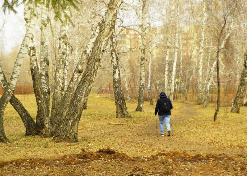 Północny odprowadzenie dla ciężar straty Dorosła kobieta angażował w Wycieczkować w miasto parku dla zdrowego styl życia i aktywn obraz royalty free