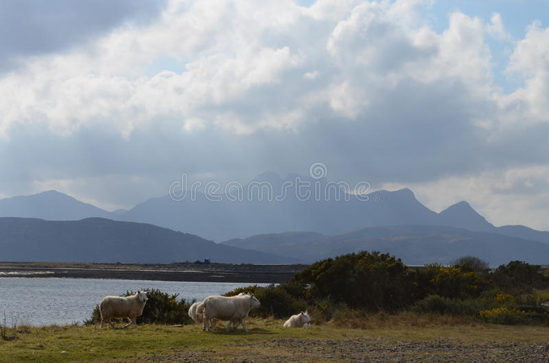 Północny Szkocja zdjęcie royalty free