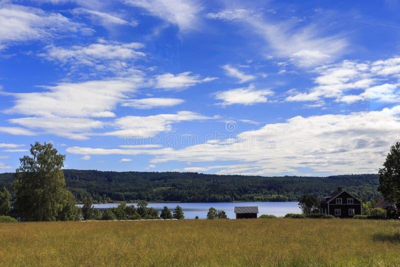 Północny szwedzi krajobraz obrazy royalty free